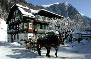 Two horses with winter sledge in front of the Hoteldorf Gruner Baum ski resort in Austria