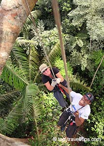 Asa Gislason tree climbing Amazon Jungle