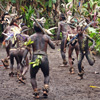 Kastom dancing in Vanuatu